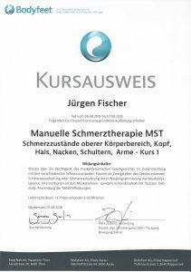 Kursausweis Manuelle Schmerztherapie 1