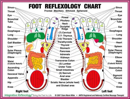 Foot-Reflexology-Chart
